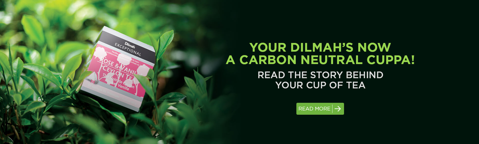 Your Dilmah's now a carbon neutral cuppa!